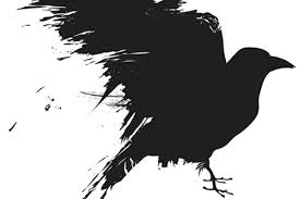 crows-1